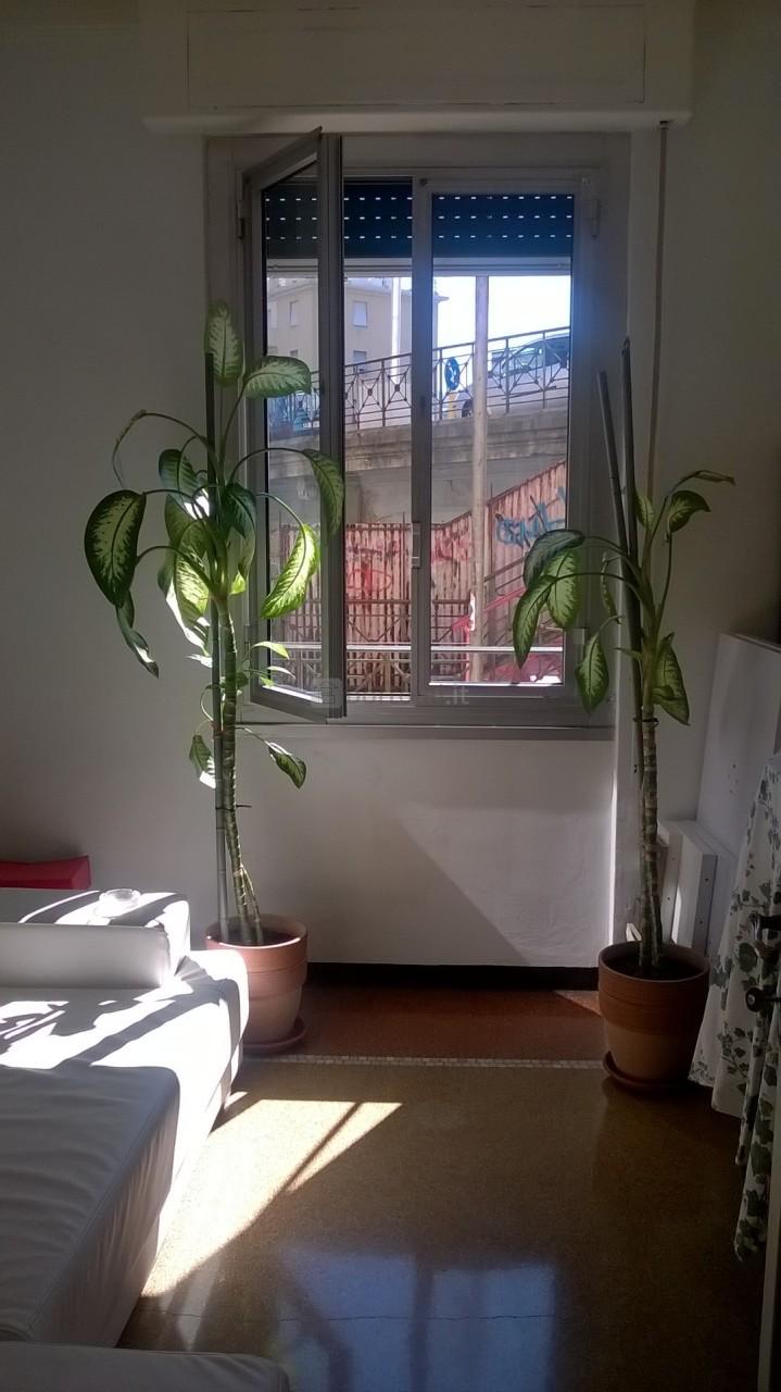 Apartment, san fruttuoso, Sale - Genova