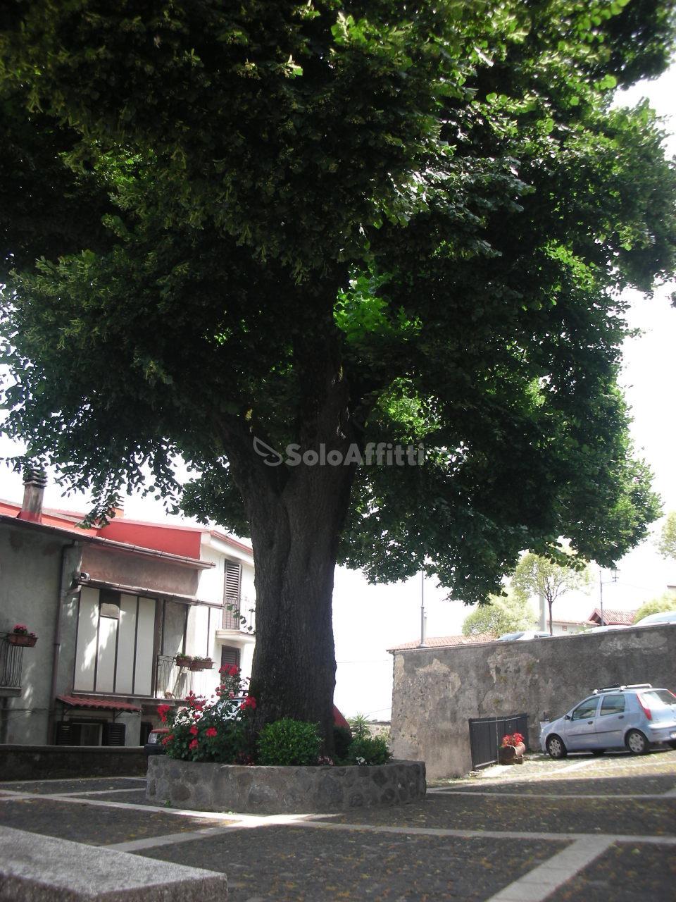 Bilocale Galluccio Piazza S. Anna 4 7