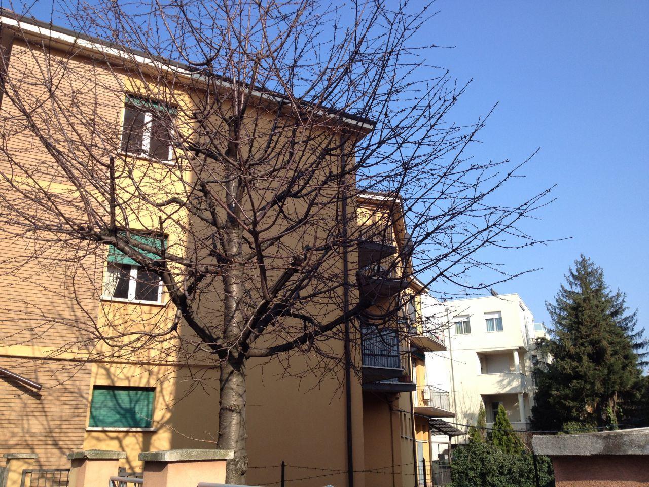 Bilocale in vendita a Bologna