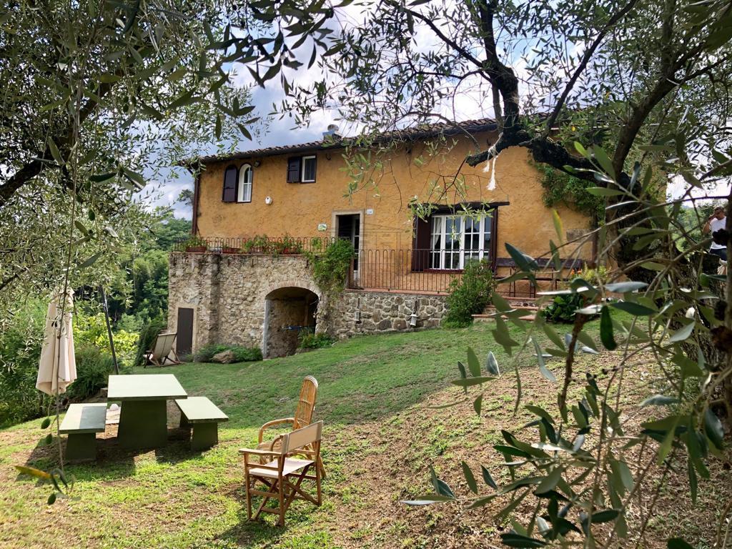 IA03388 Lucca Mastiano