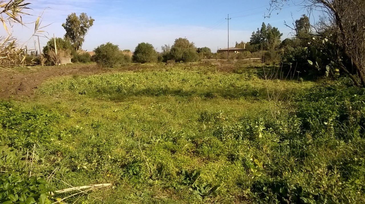 Terreno Agricolo in vendita a San Sperate, 9999 locali, prezzo € 12.000 | Cambio Casa.it
