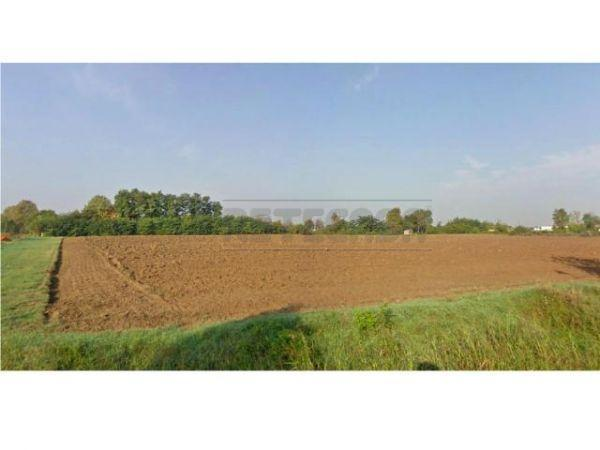 Terreno Edificabile Residenziale in Vendita a Borgo Virgilio