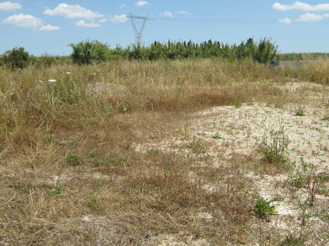 Terreno Edificabile Comm.le/Ind.le in vendita a Serramanna, 9999 locali, prezzo € 200.000 | Cambio Casa.it