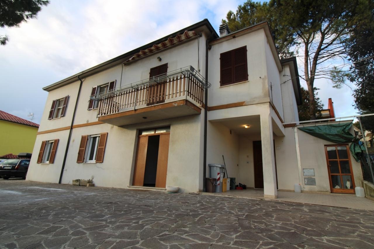 Vendita Appartamento a Belvedere Ostrense - F2319