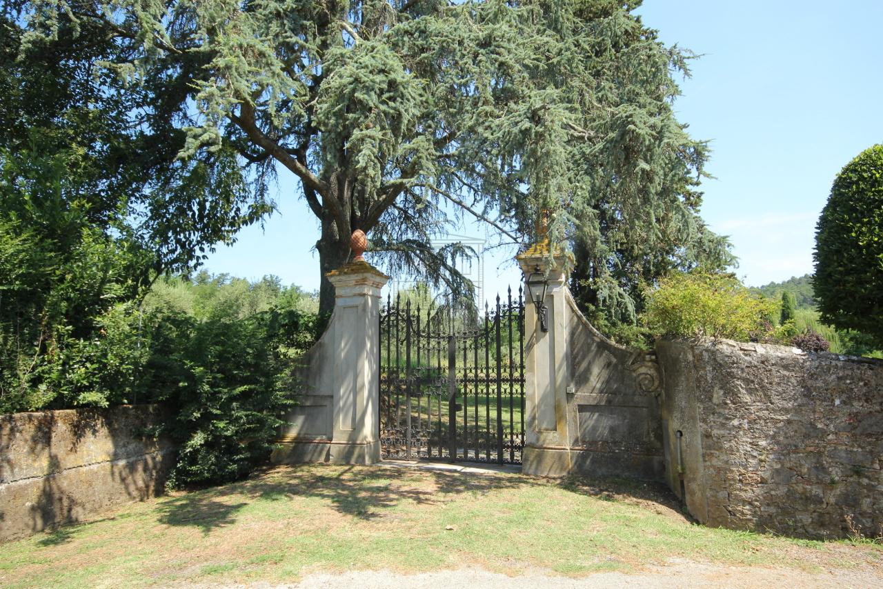 Villa antica Lucca S. Macario IA03379 img 20