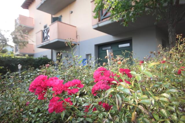 Vai alla scheda: Casa indipendente Vendita - Bertinoro (FC) - Codice -3358