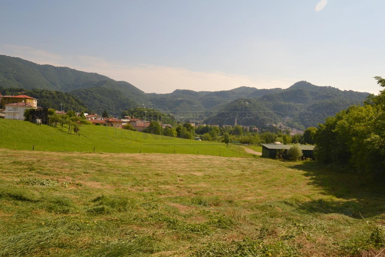 Terreno Agricolo in Vendita a Valdagno