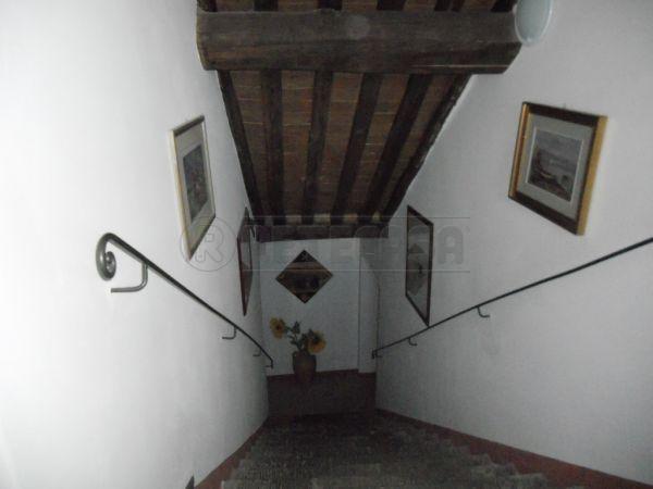 Bilocale Castelnuovo Berardenga  1