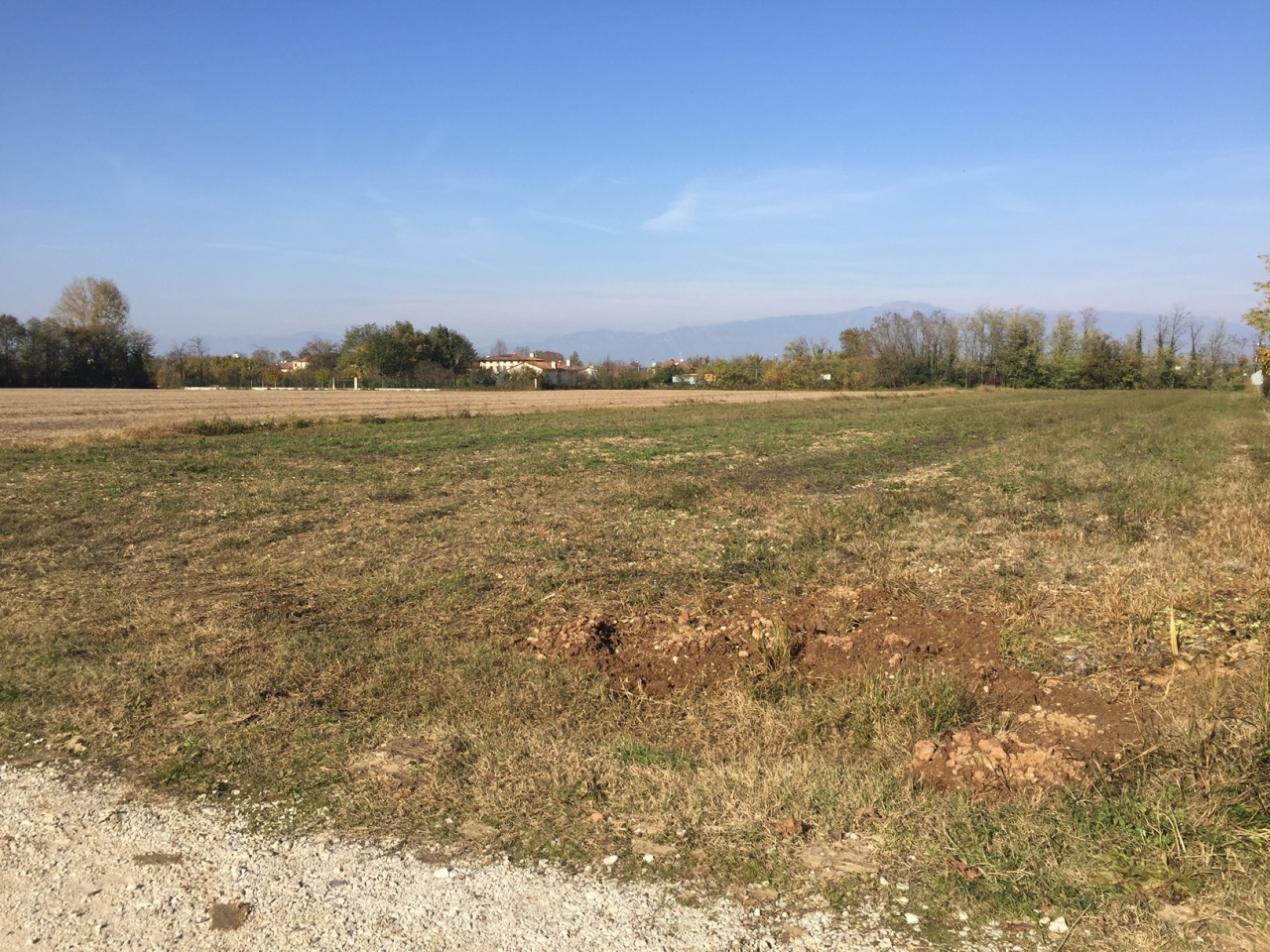 Terreno Edificabile Residenziale in vendita a Castelfranco Veneto, 1 locali, prezzo € 90.000 | CambioCasa.it