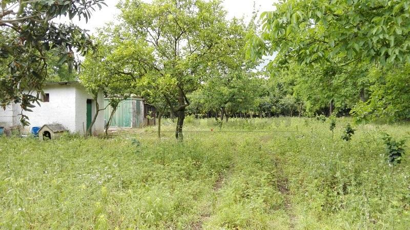 Terreno Agricolo in vendita a Mercato San Severino, 1 locali, prezzo € 33.000 | Cambio Casa.it
