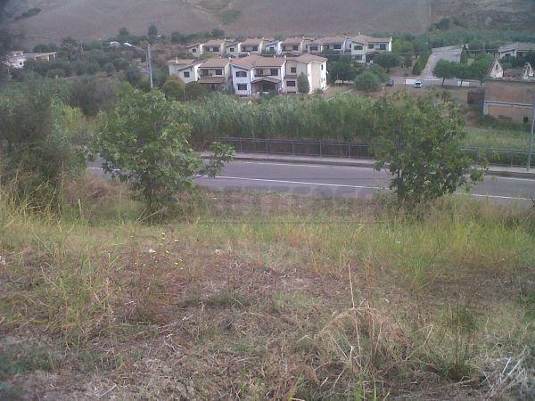 Terreno edificabile in vendita - 3200 mq