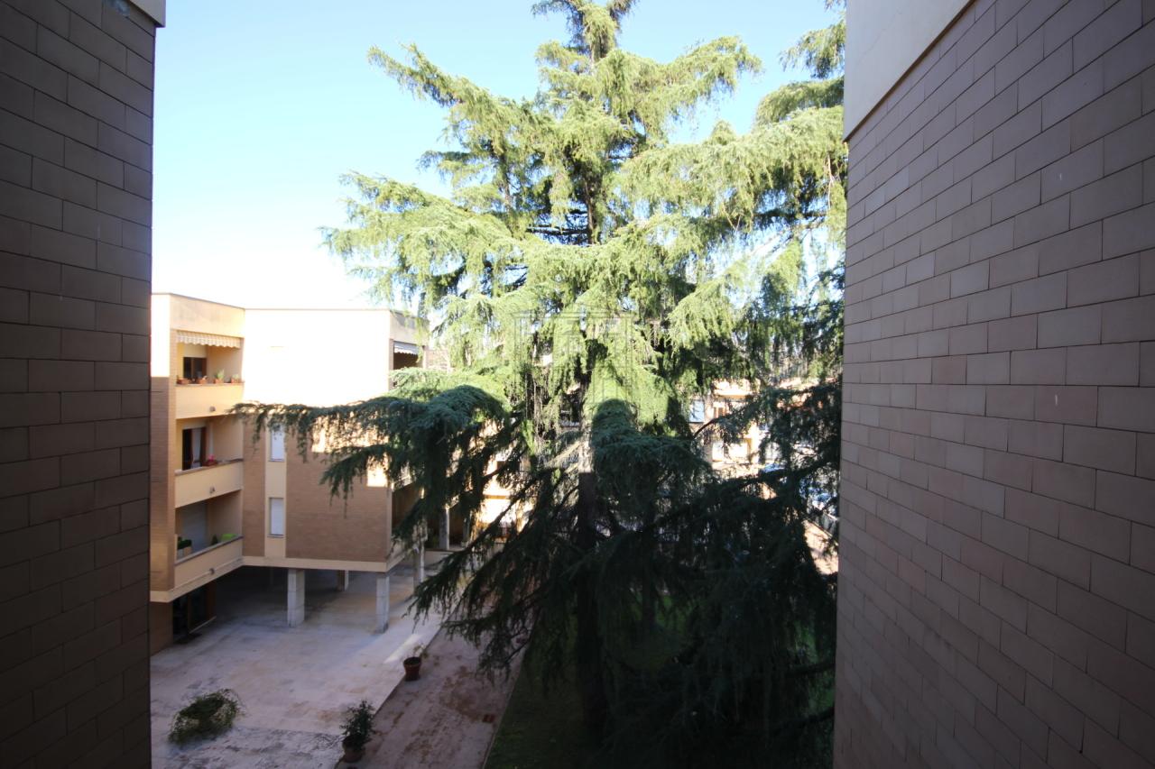 Appartamento Lucca Circonvallazione IA03070 img 11