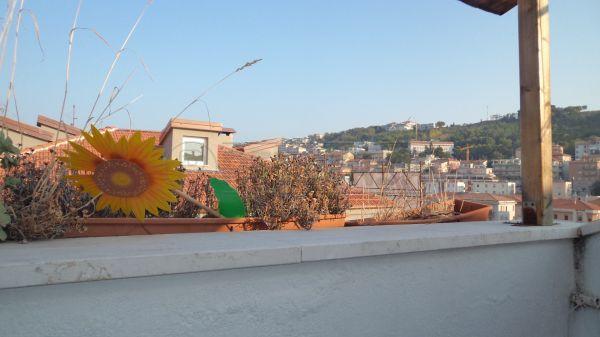 Bilocale Ancona C.so Amendola 5