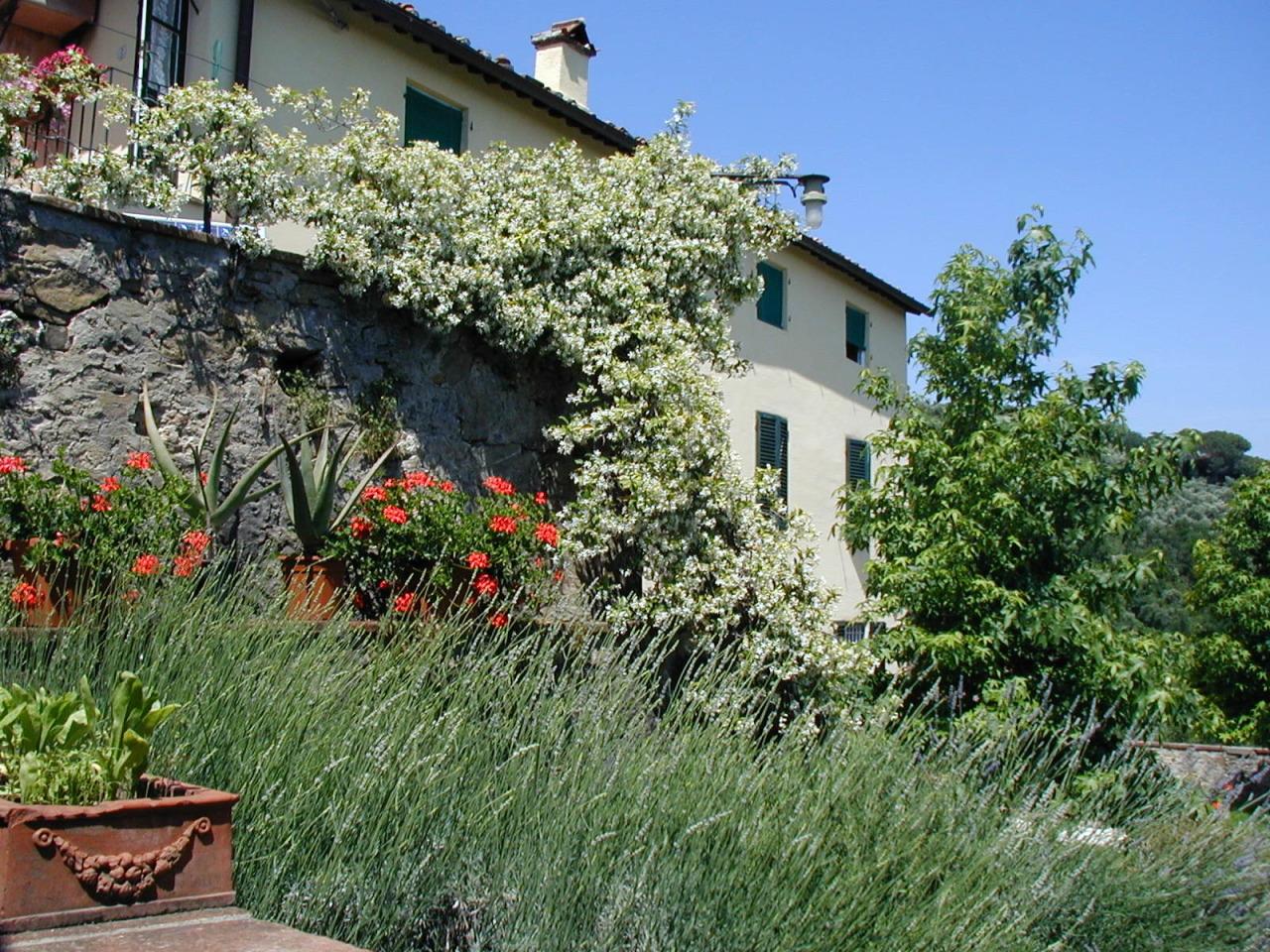 Casa colonica Lucca Arsina IA02766 img 9