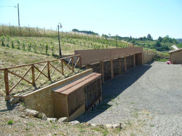 Bilocale Monteriggioni  4