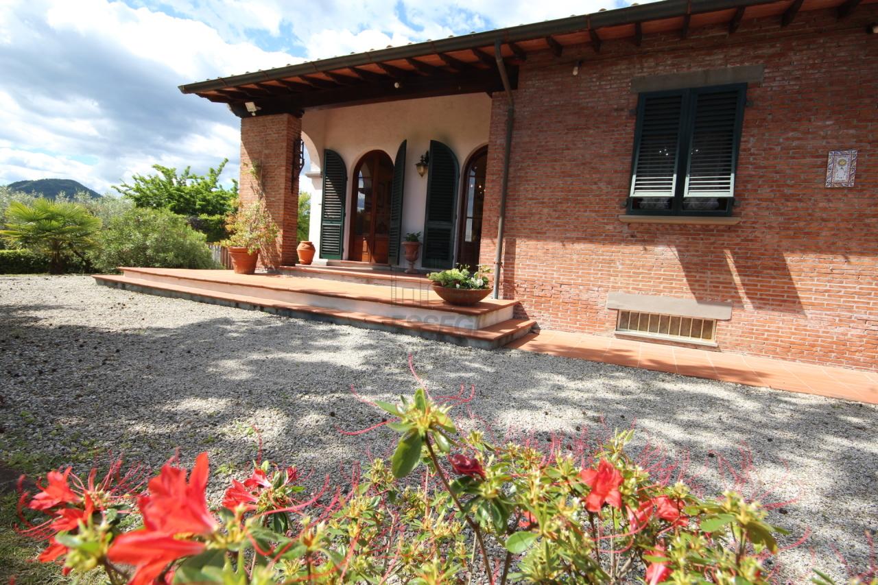 IA03337 Lucca Trecancelli