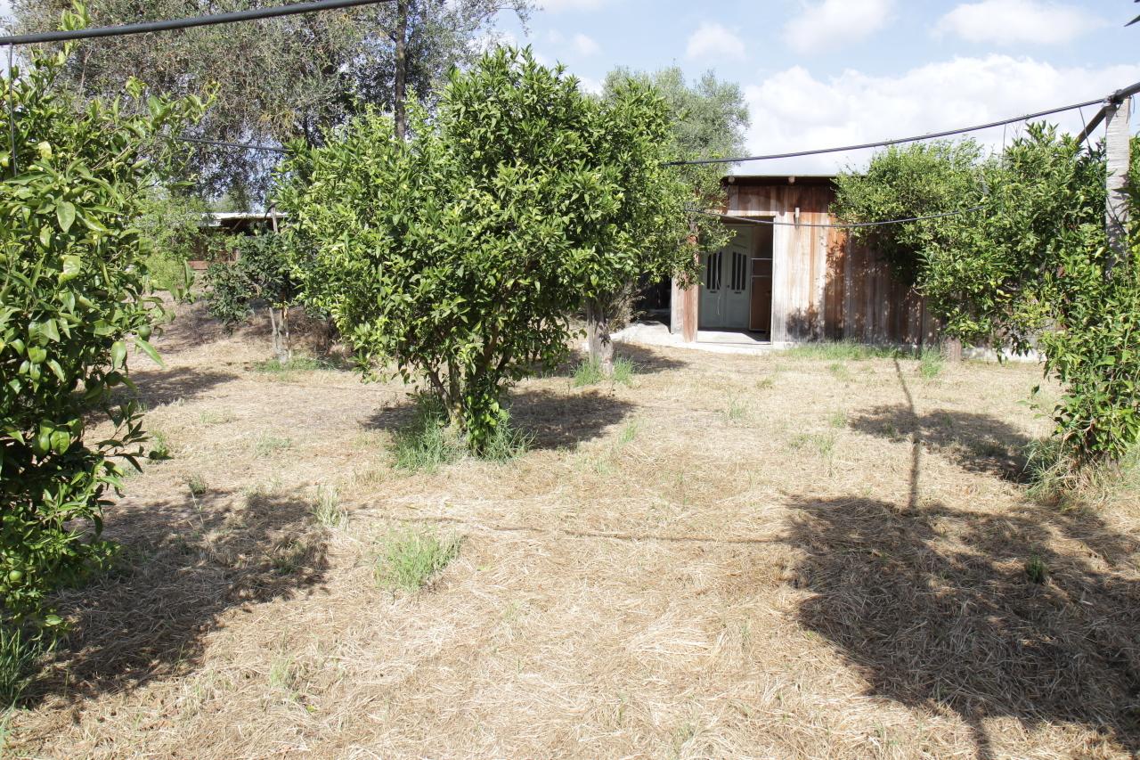 Soluzione Indipendente in vendita a San Sperate, 2 locali, prezzo € 44.000   CambioCasa.it