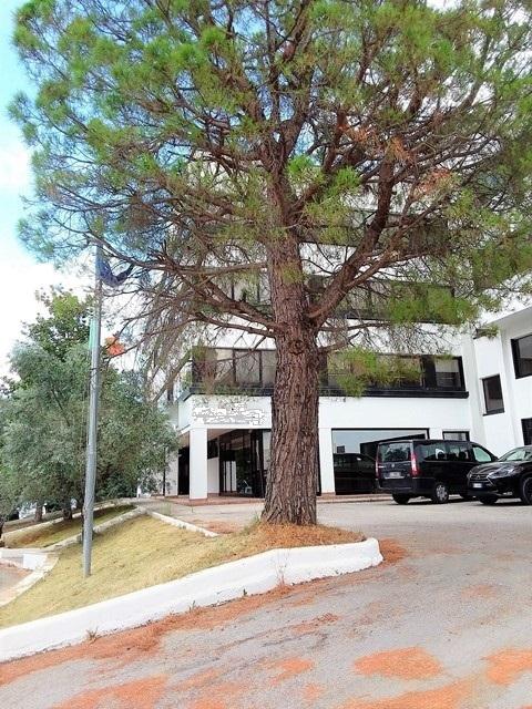 Capannone in vendita a Acquaviva Picena, 33 locali, prezzo € 1.830.000 | CambioCasa.it