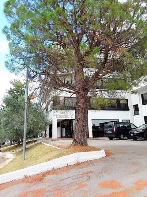 Capannone in affitto a San Benedetto del Tronto, 33 locali, prezzo € 15.000   CambioCasa.it