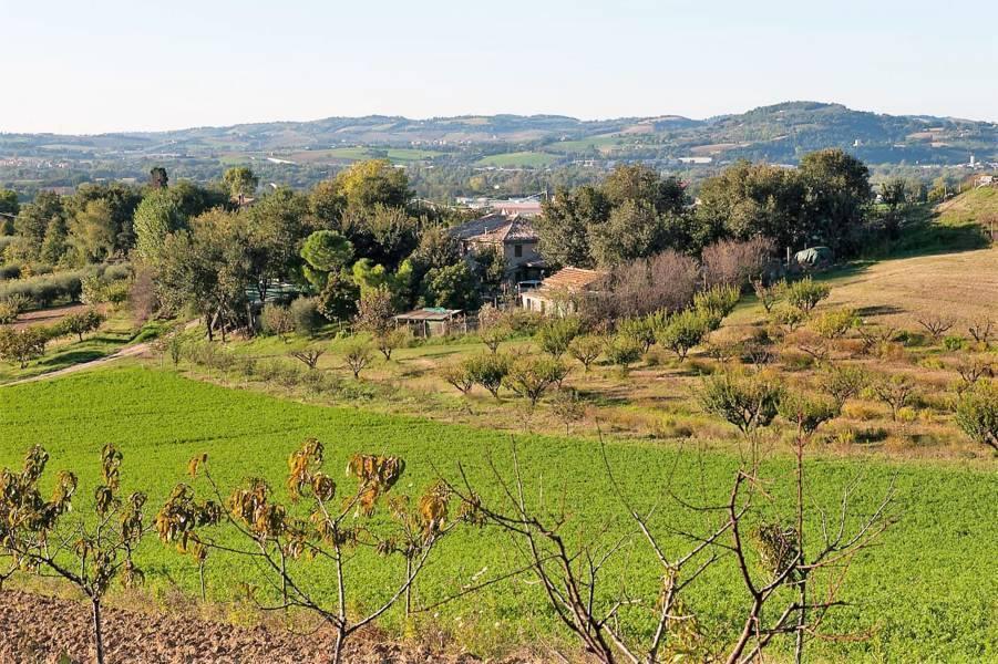 Agricolo - Seminativo a Pesaro Rif.10145591