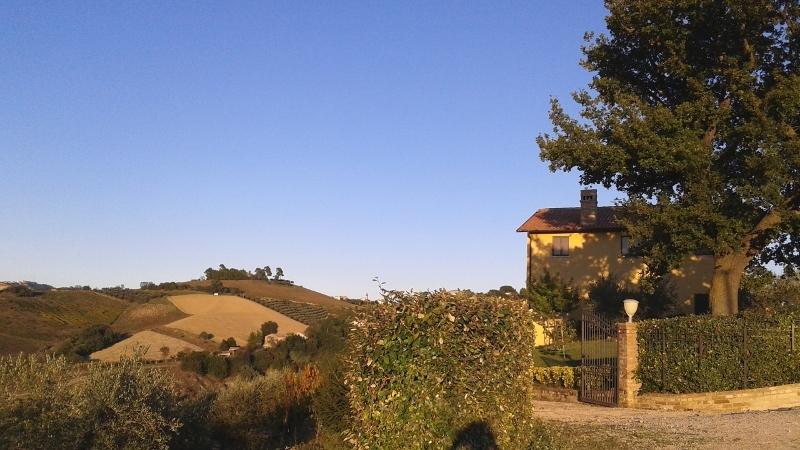 Rustico / Casale in vendita a Offida, 10 locali, prezzo € 395.000 | CambioCasa.it
