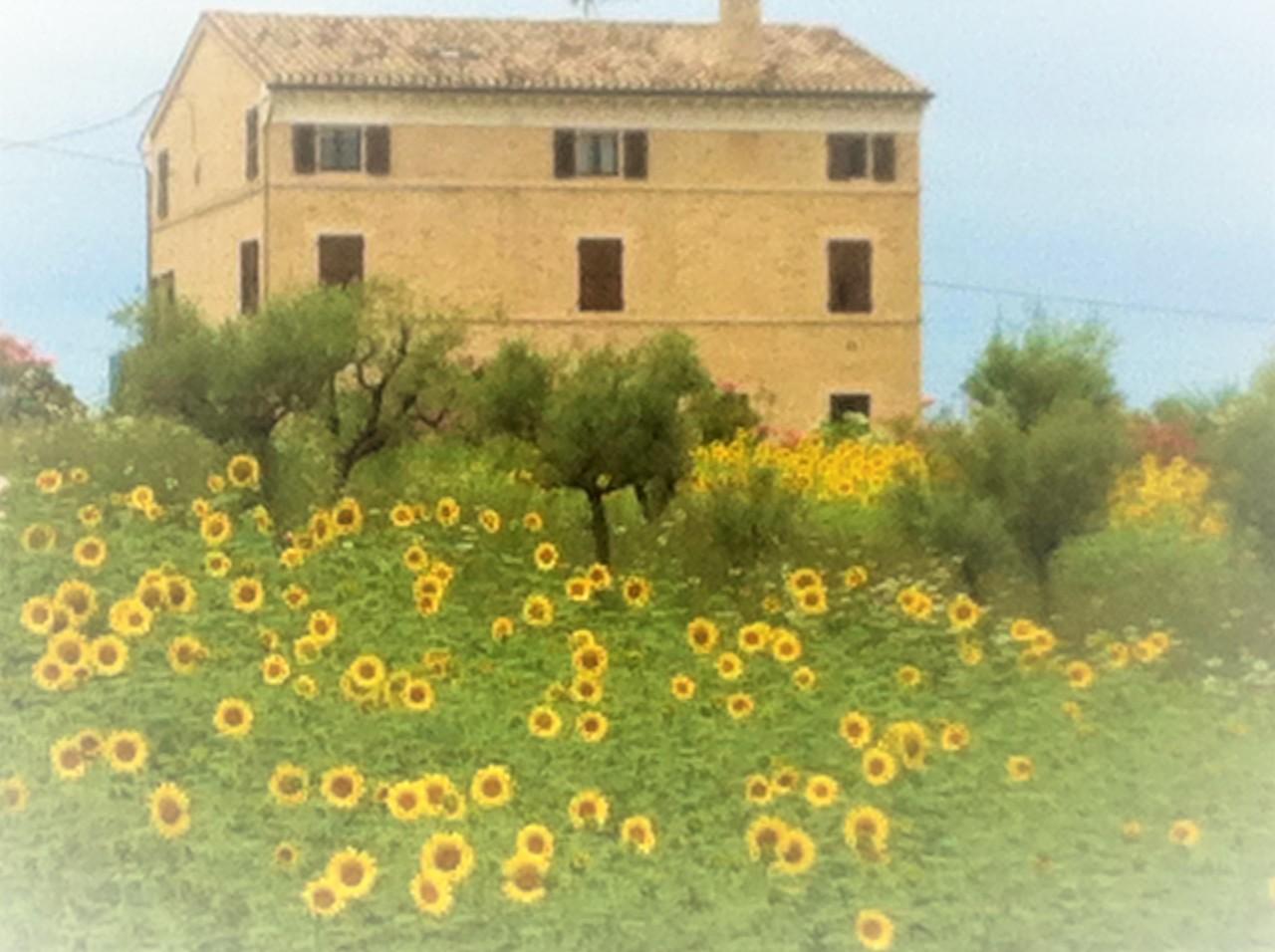 Rustico / Casale in vendita a Montappone, 11 locali, prezzo € 345.000   Cambio Casa.it