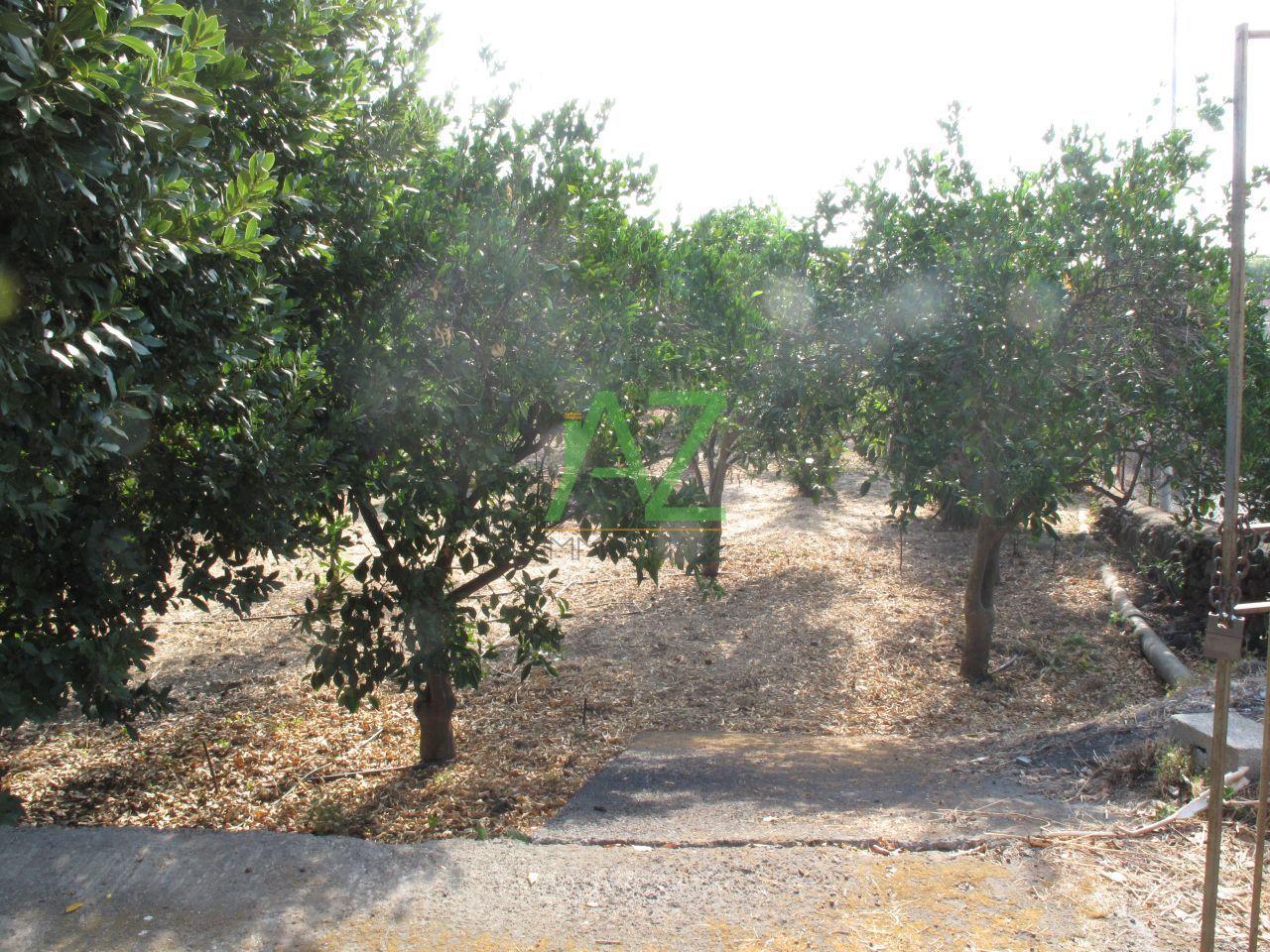 Terreno Agricolo in vendita a Misterbianco, 9999 locali, prezzo € 27.000 | Cambio Casa.it