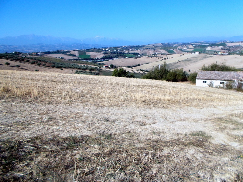 Terreno Agricolo in vendita a Morro d'Oro, 1 locali, prezzo € 370.000 | Cambio Casa.it