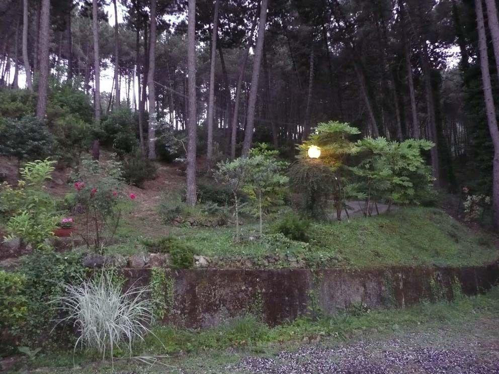 Foto 1/10 per rif. 104308