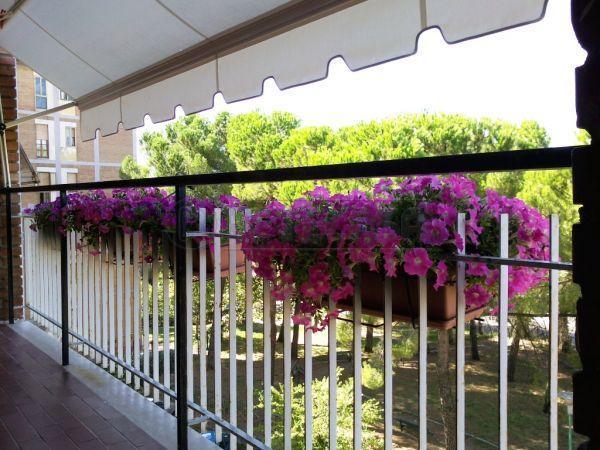 Appartamento in vendita a Siena, 2 locali, prezzo € 215.000   Cambio Casa.it