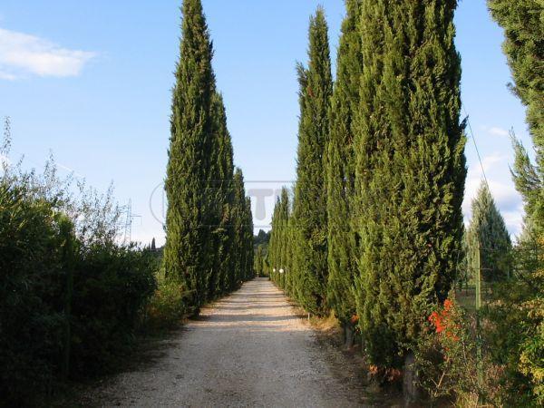 Rustico / Casale in vendita a Poggibonsi, 14 locali, prezzo € 1.230.000 | Cambio Casa.it