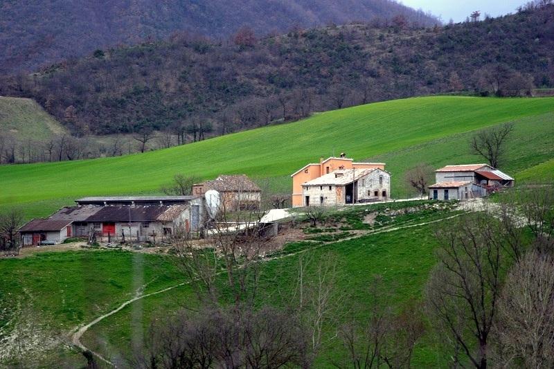 Azienda Agricola in vendita a Sassoferrato, 30 locali, prezzo € 600.000 | Cambio Casa.it