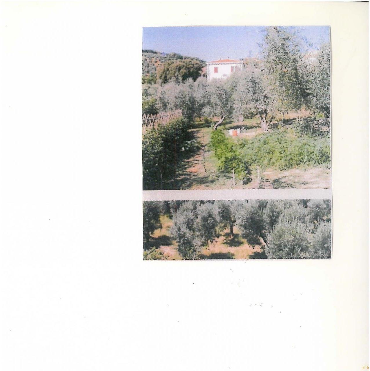 Appartamento in vendita a Santa Luce, 9999 locali, Trattative riservate | CambioCasa.it