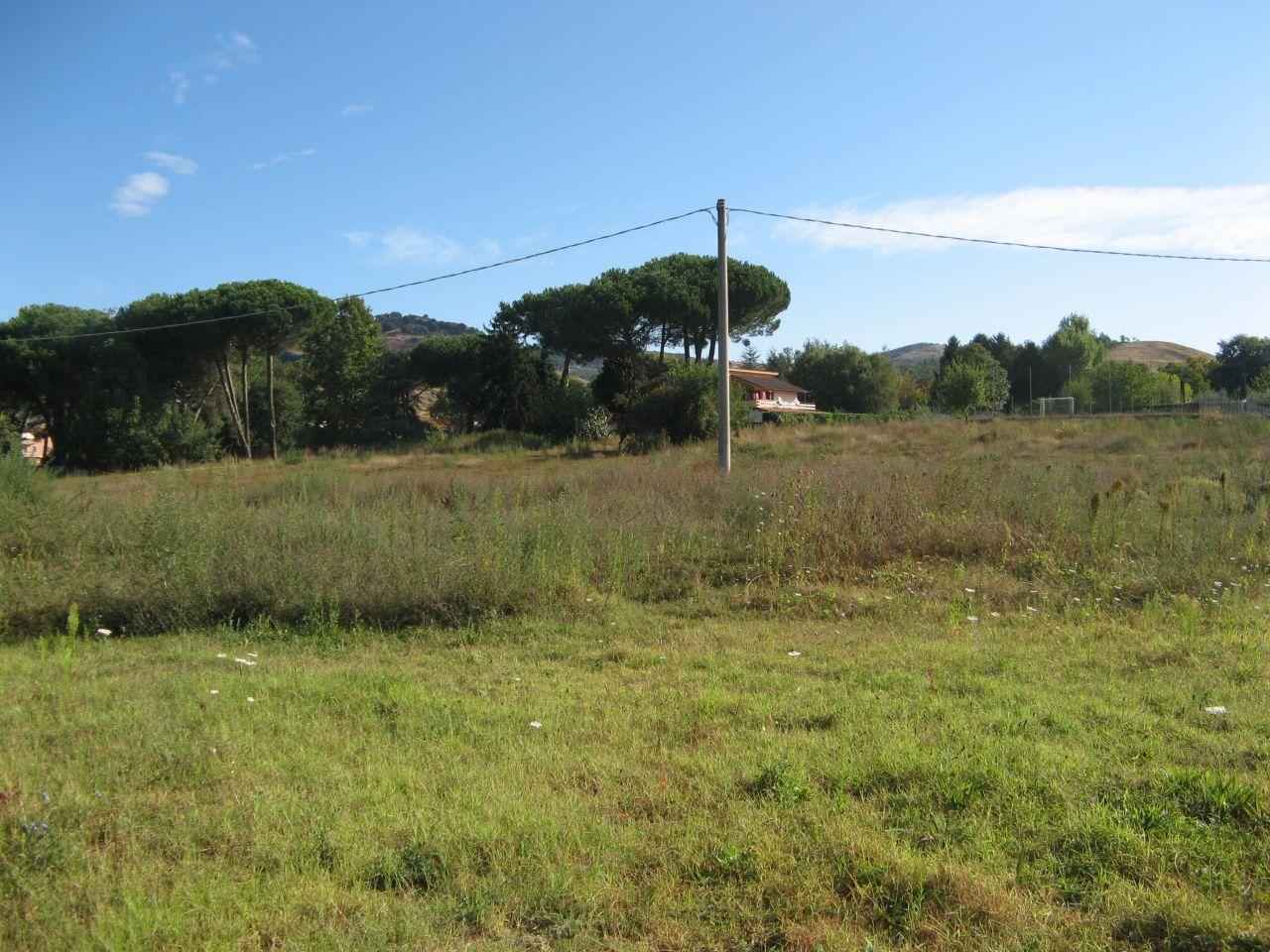 Terreno edificabile in vendita grottaferrata quattrucci for Affitto ufficio tuscolana