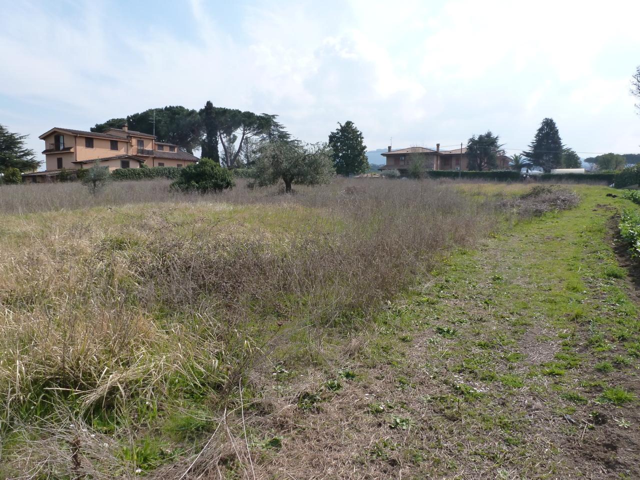 Terreno edificabile in vendita frascati tuscolana case for Terreno edificabile