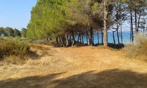 spiaggia4.jpg