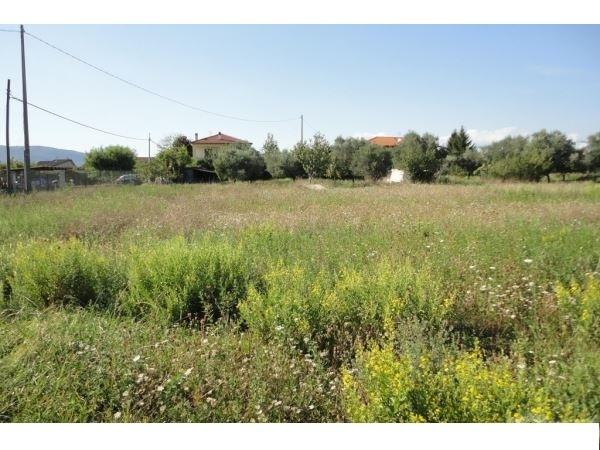 terreno_residenziale-in-vendita-a-ortonovo.jpg