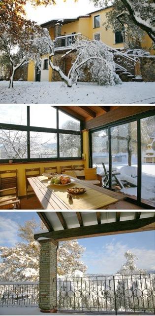 z Snow December.jpeg