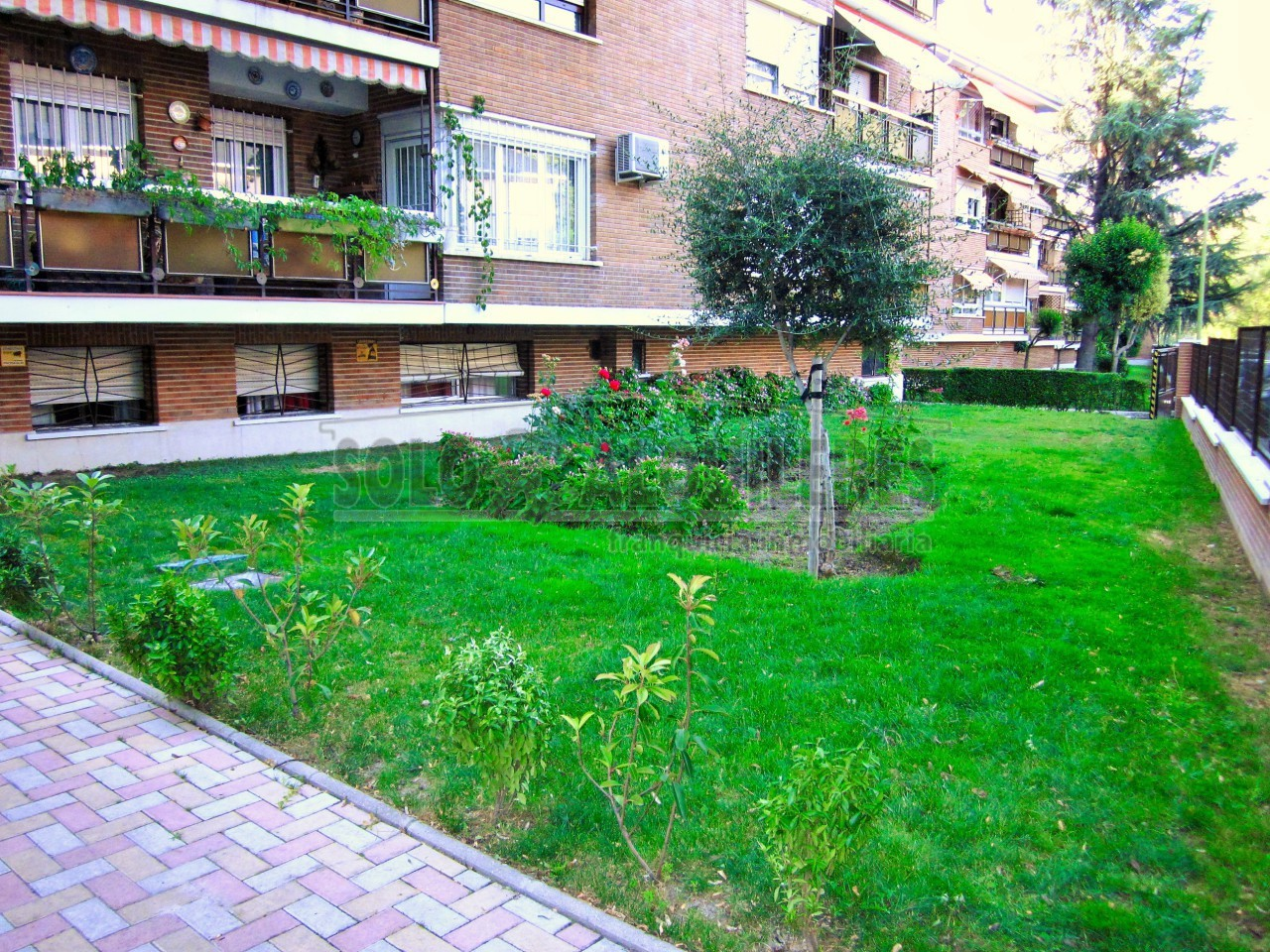 flat-for-rent-in-calle-josé-fentanes-moncloa-aravaca-in-madrid