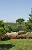 villa_giardini.jpg