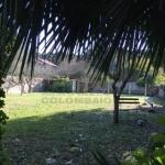 6)  giardino posteriore.JPG
