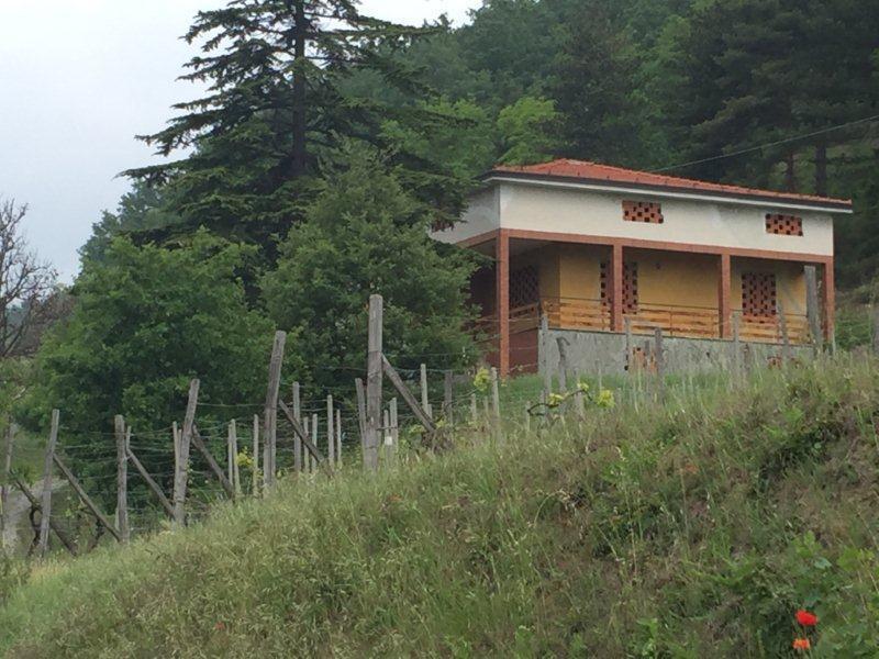 Villa in discrete condizioni in vendita Rif. 4146271