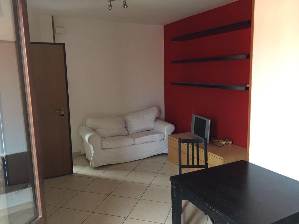 Appartamento in ottime condizioni in affitto Rif. 7924209