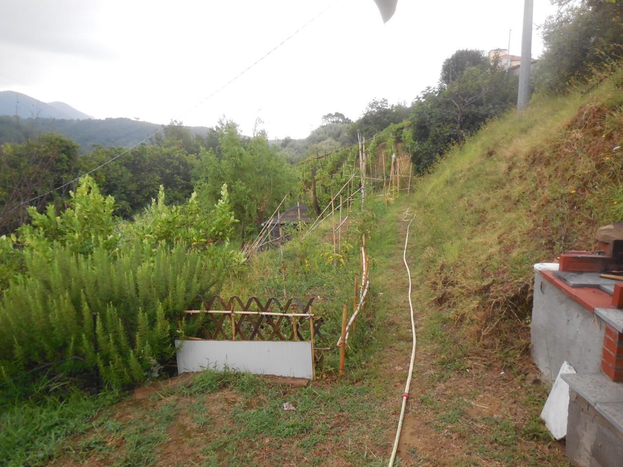 Terreno agricolo a Castelnuovo Magra Rif. 9096025