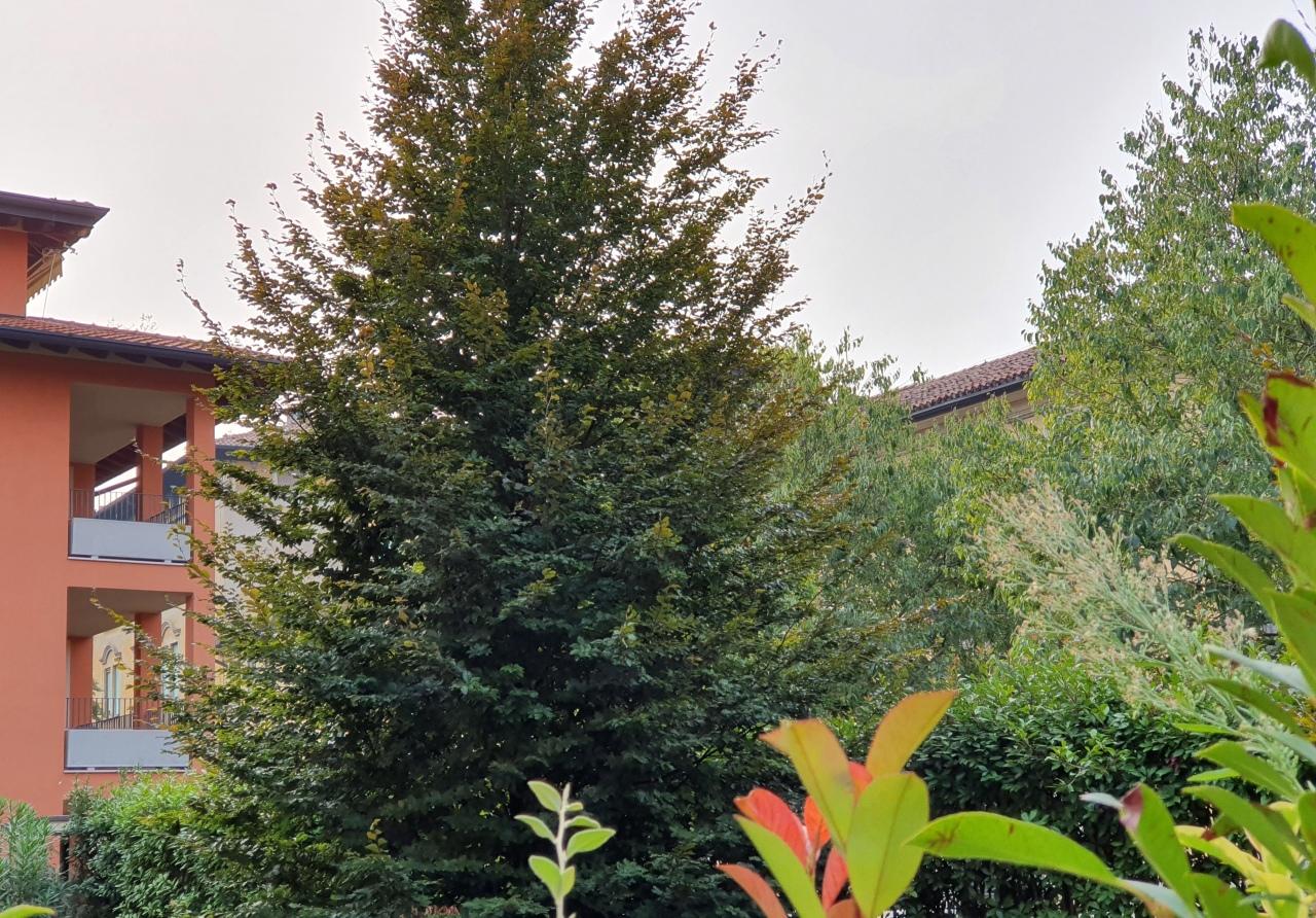 Appartamento in vendita a Brescia, 4 locali, prezzo € 480.000 | PortaleAgenzieImmobiliari.it