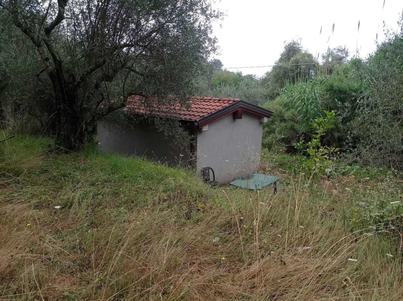 Terreno Agricolo in vendita a Fosdinovo, 1 locali, prezzo € 50.000   PortaleAgenzieImmobiliari.it