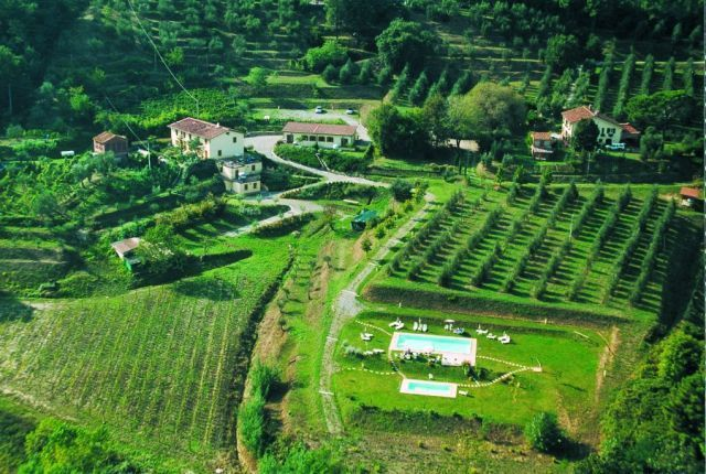 Villa in ottime condizioni arredato in affitto Rif. 10715714