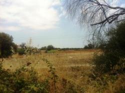 Terreno agricolo in Vendita a Siracusa, zona CITTA' GIARDINO, 140'000€,