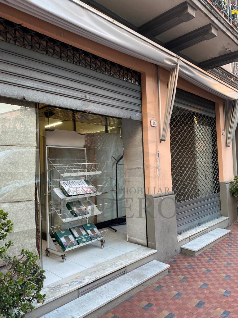 Attività / Licenza in affitto a Ventimiglia, 4 locali, prezzo € 1.500   PortaleAgenzieImmobiliari.it
