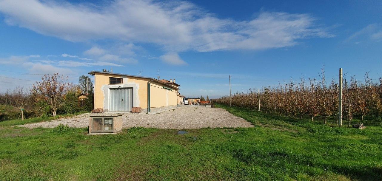 Azienda Agricola a Gaggio, Castelfranco Emilia Rif. 11702481
